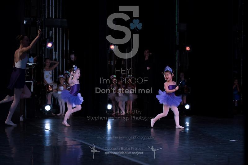 DSC_4347