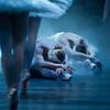 Swan Lake. Ballet performed by English National Ballet at the London Coliseum, London, UK