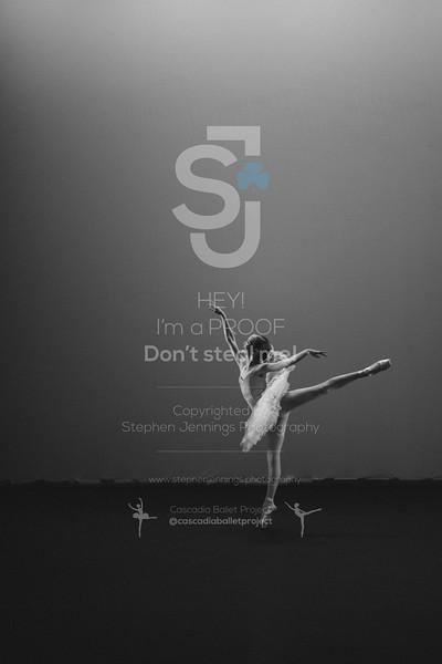 DSC_6823-Edit
