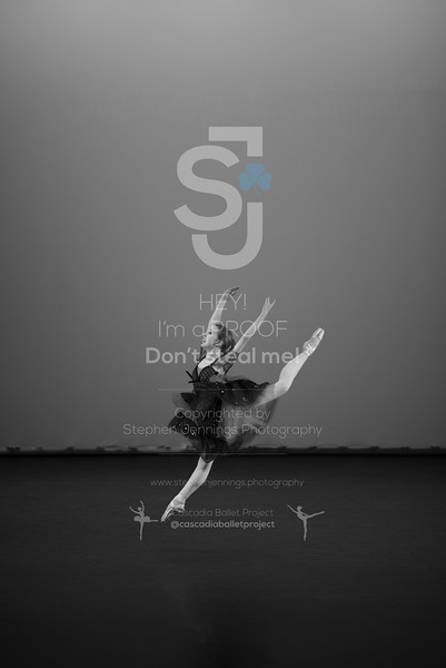 DSC_6452-Edit