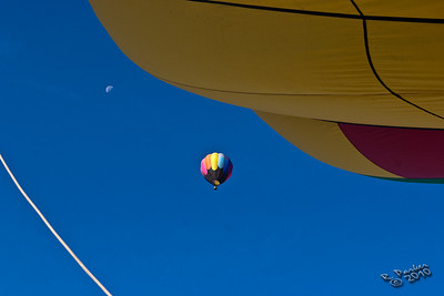 Dutchess County Balloon Festival