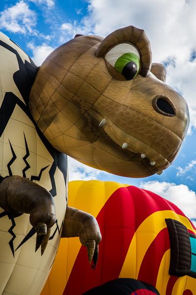 Baby T-Rex at Balloon Fiesta 2016