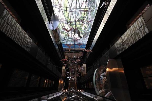 Promenade Elevators
