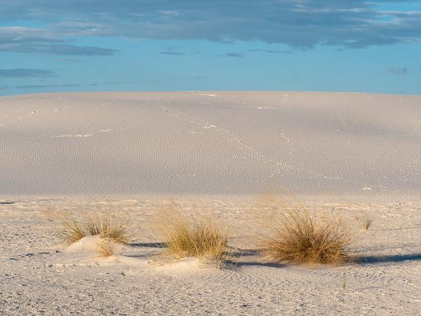 Footprints in the dune