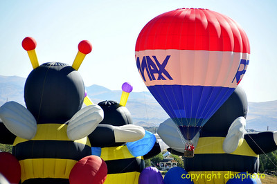 Newlyweds in the REMAX balloon