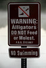 Feb. 19, 2011, Fort Myers, FL: Warning signs are prominently posted around the lake behind Field 5 at the player development complex. Players have been known to go fishing in the lake, but no one has gone swimming. (Brita Meng Outzen/Boston Red Sox)