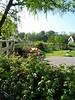 Ogrod przy wiatraku.<br /> <br /> The windmill's garden.
