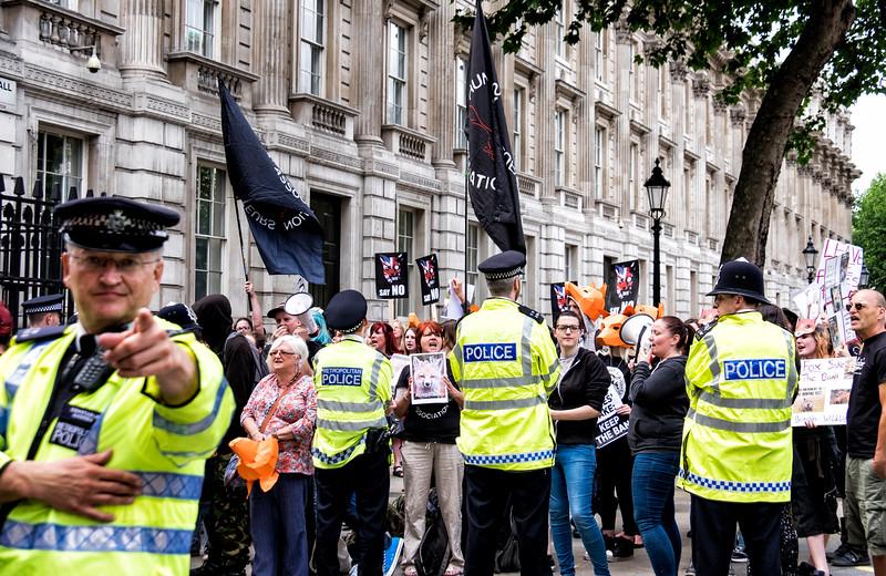 Fox Hunting Protestors Outside Downing Street