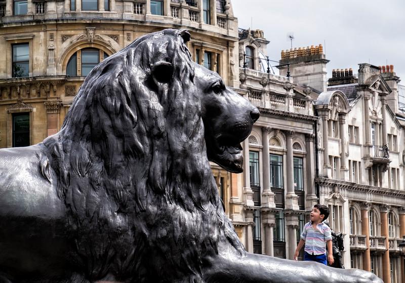 Lion Trafalgar Square