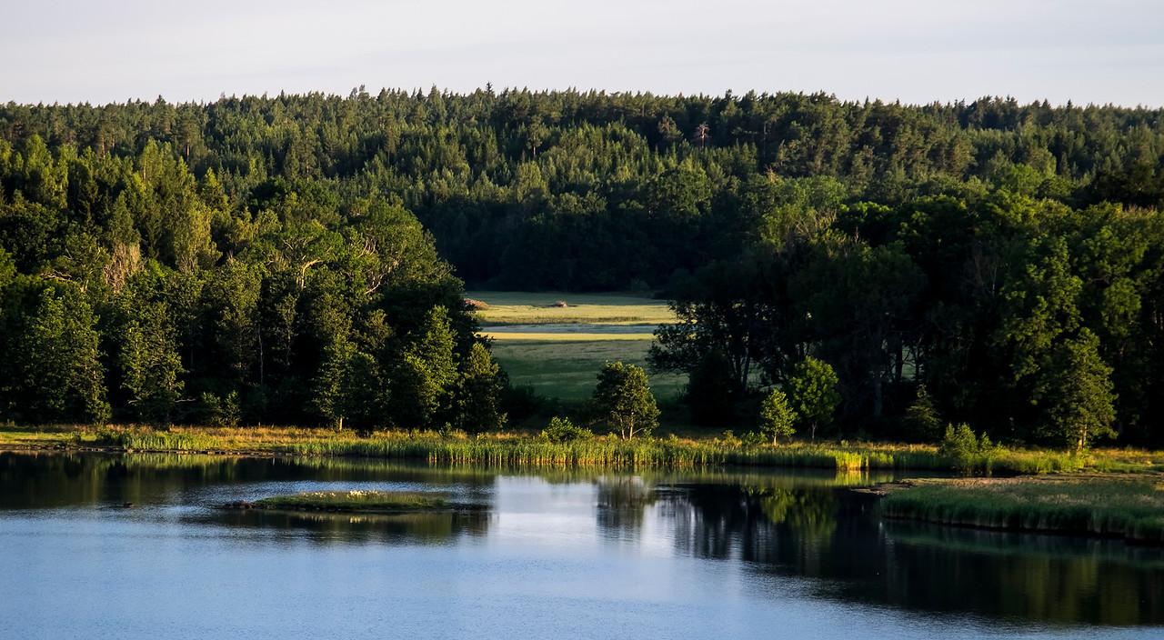 Meadow at Dawn Stockholm Archipelago