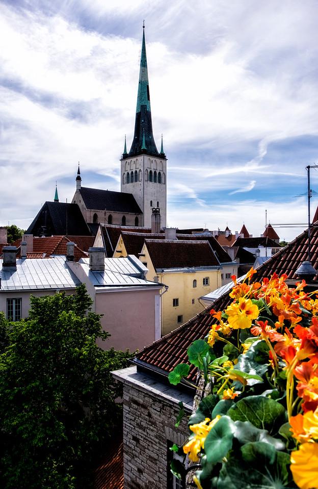 View from Fat Margaret Tower Tallinn