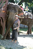 I wish I took more elephant pictures!<br /> 2010 Maryland Renaissance Festival