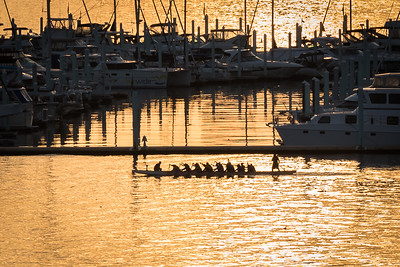 2016-08-16-Rowing