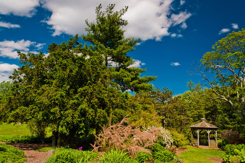 Gazebo and Trees at Cylburn Arboretum, Baltimore, Maryland