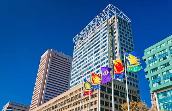 Buildings and Flags on Pratt Street, Baltimore, Maryland