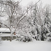 """Backyard at 10:00 am. Expecting 8 more hours of snow. About 22"""" so far."""