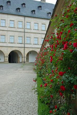 Bamberg New Residence Rose Garden