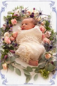 Newborn Kalea - Series