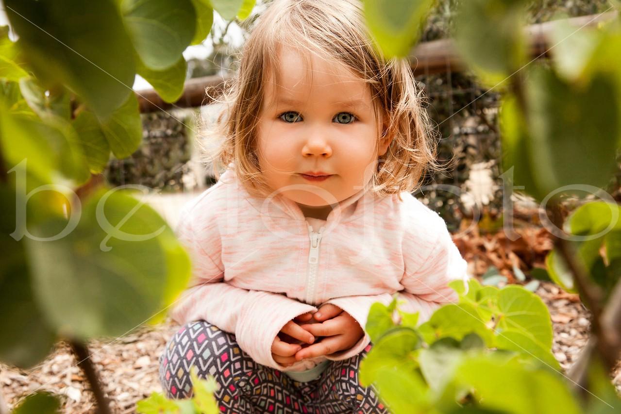 Hide & Seek in the Garden