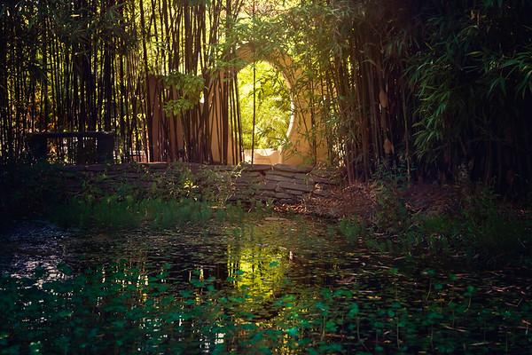 Click to See Bamboo Garden Collection