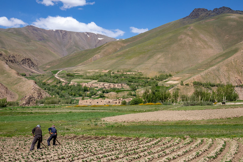Farm workers near Jawqul (south-east of Bamyan).