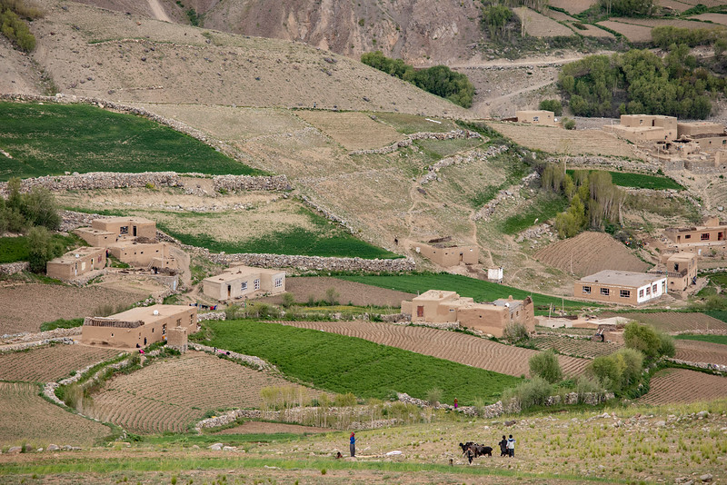 Foladi valley view (near Bamyan).