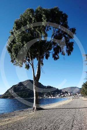 Bolivia0620061091