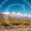 Chile052005-0264