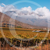 Chile052005-0262
