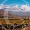 Chile052005-0261
