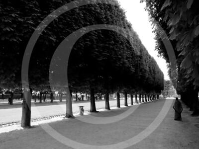 Paris04201118_19-057