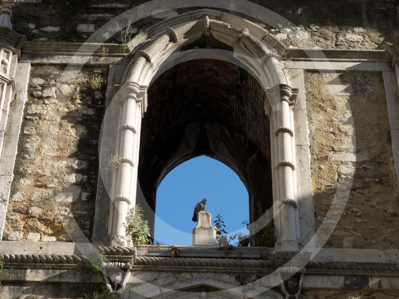Lisboa04201116-229
