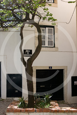 Portugal14042008_703