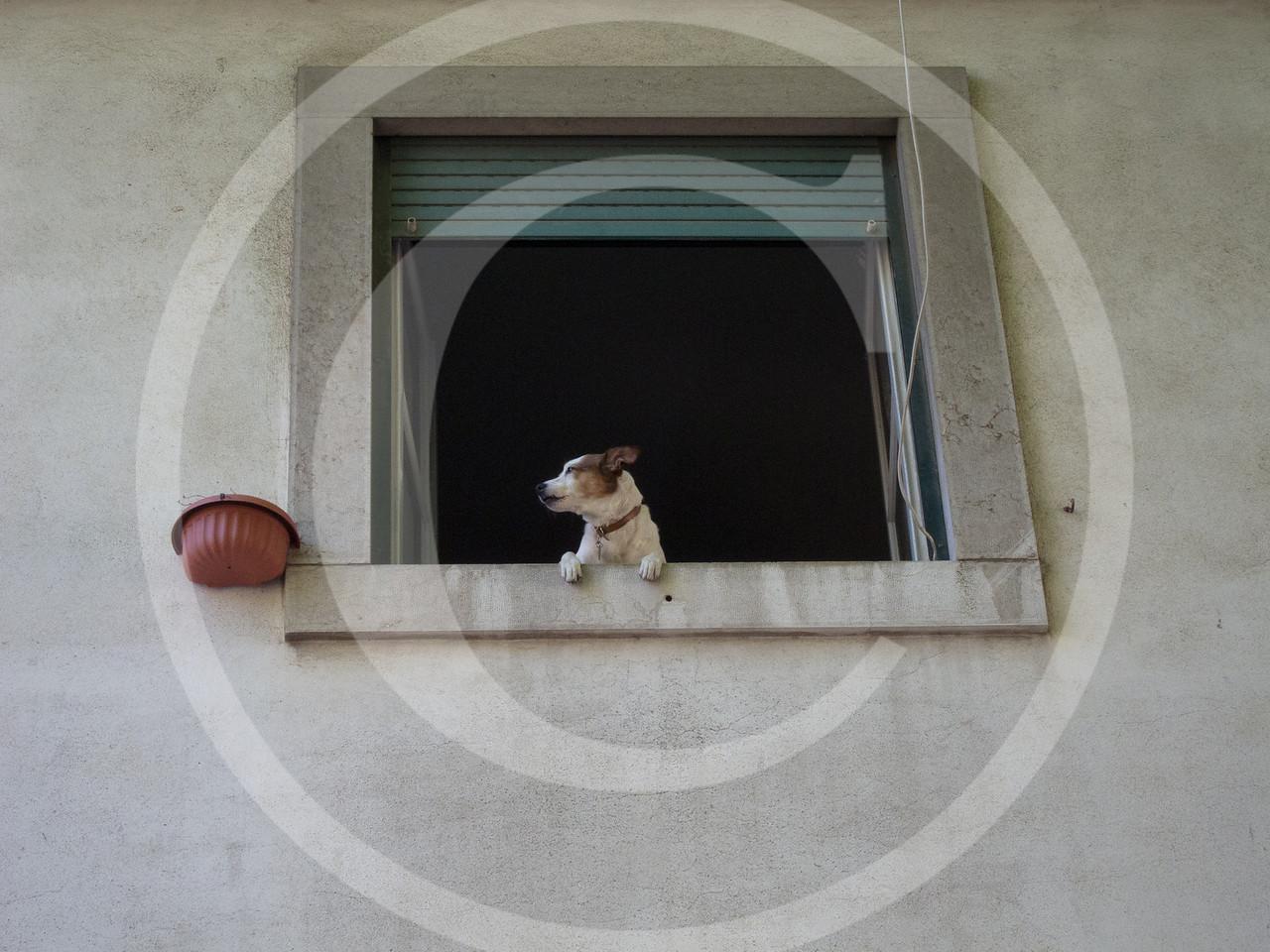 Lisboa04201117-038