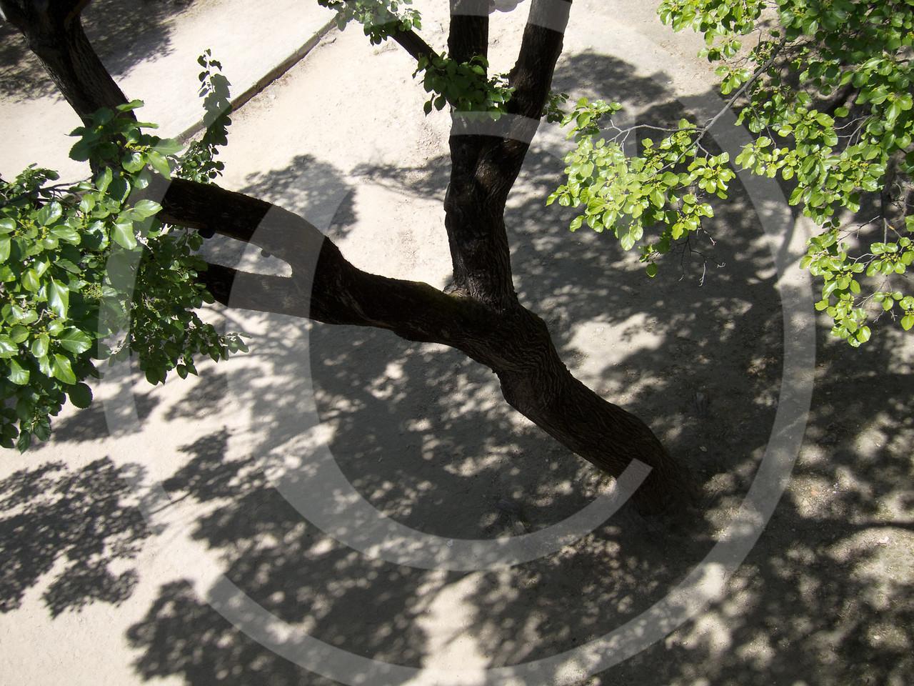 Lisboa04201117-106