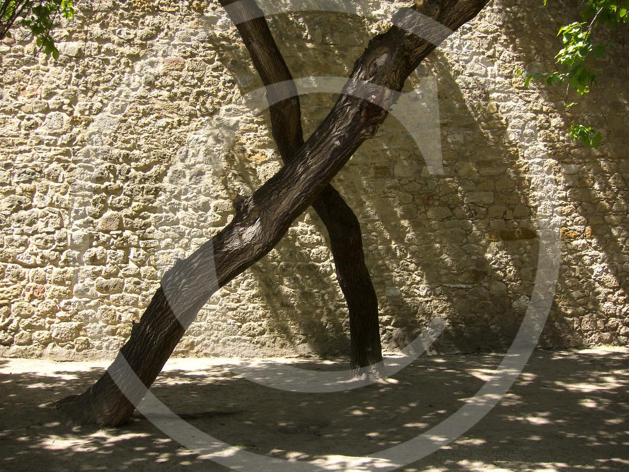 Lisboa04201117-113