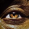 Divine Sorrow Eye 1-2