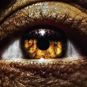 Divine Eyeball-2 Large