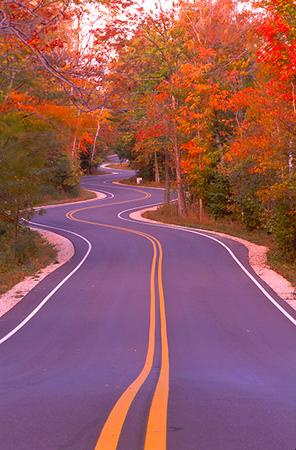 Winding Road Gills Rock