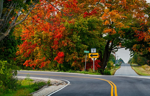 County T  And Maple Tree Road Triangle Egg Harbor