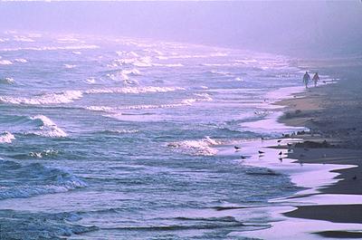 Whitefish Dunes