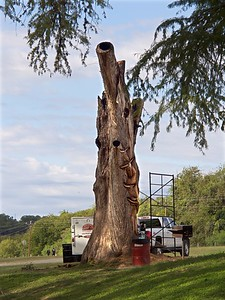 +++A241843 Bandera City Park - Tree Carving – Version 2
