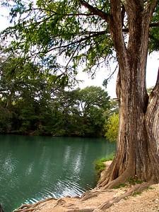 +++A241828 Bandera City Park - Cypress, Medina River – Version 2