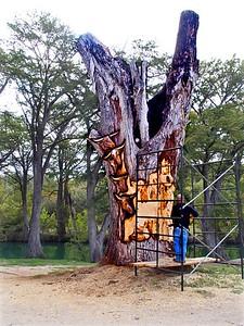 +++A241846 Bandera City Park - Tree Carving – Version 2