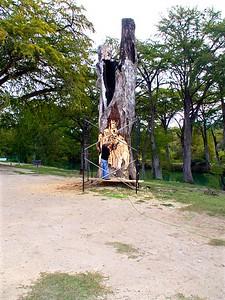+++A241845 Bandera City Park -  – Version 2