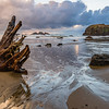 Driftwood with Receding Tide