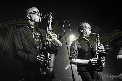 ©Rockrpix - Average White Band