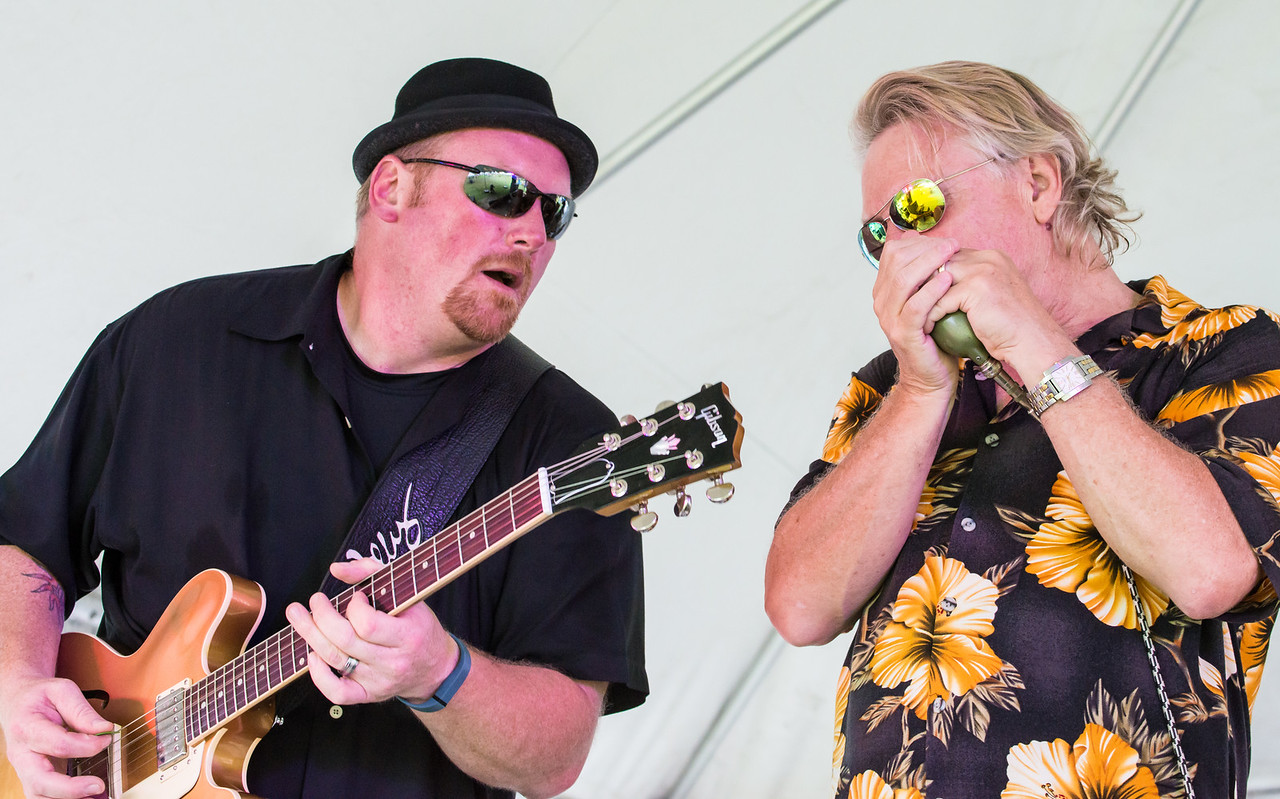 Mark Williams and Steve Vonderharr-Boom Boom Stevie Vonderharr and the Knockouts- Madelia Blues Fest 2014