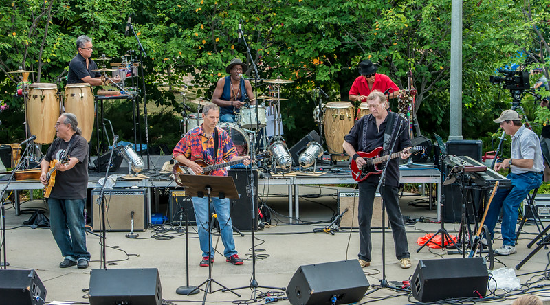 Salute to the Music of Bob Dylan 2014-Wolfe Park, St. Louis Park
