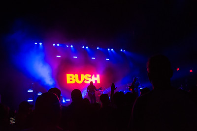 bush08-10-17-35